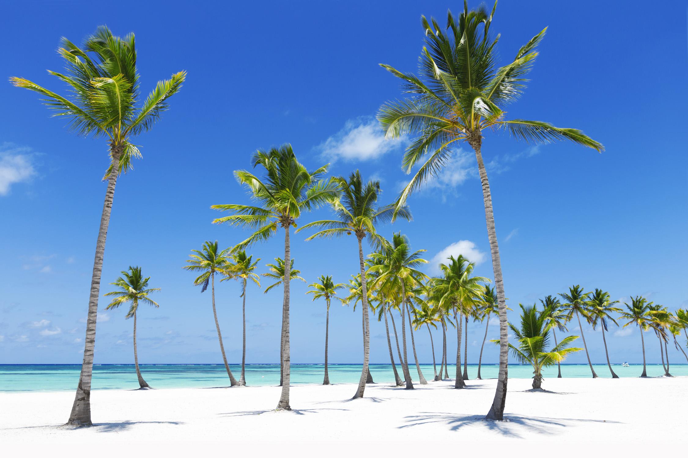 Jamaika Urlaub Hotel Und Flug
