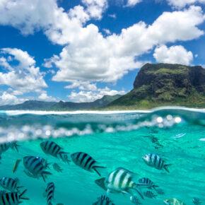 Super-Frühbucher: 15 Tage Mauritius im guten Apartment am Meer mit Direktflug nur 725€