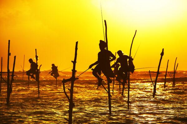 Traditionelle Fischer bei Galle auf Sri Lanka