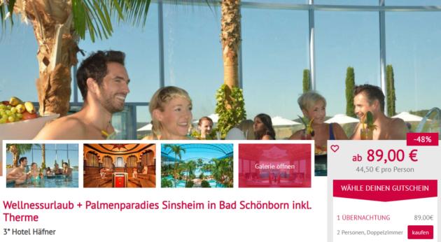 2 Tage Sinsheim