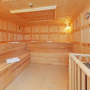 Alpenhotel Dachstein Sauna