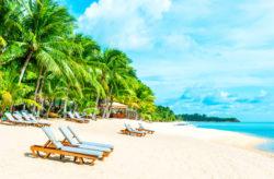 14 Tage Miami mit Flug & 4-tägiger Bahamas-Kreuzfahrt inkl. Vollpension nur 493€