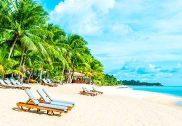 14 Tage Miami mit Flug & 4-tägiger Bahamas-Kreuzfahrt inkl. Vollpension nur 489€