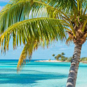 Sommerferien: 6 Tage Karibik Kreuzfahrt inkl. Vollpension nur 472€ // 15 Tage Miami mit Direktflug & Kreuzfahrt nur 909€