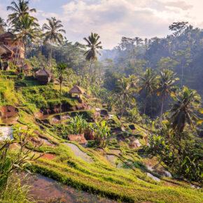 Bali Tipps: Entdecke Bali, das Surferparadies Lombok & die Gili Inseln