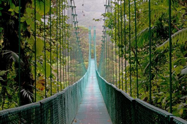 Costa Rica Brücke Jungle