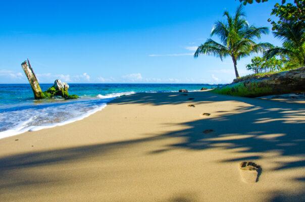 Costa Rica Beste Reisezeit