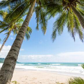 Multistop-Madness: Flüge nach Miami, weiter nach Costa Rica & zurück nur 429€