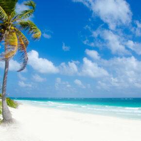Karibik: 11 Tage Traum-Insel Cozumel mit gutem Hotel & Flug nur 433€