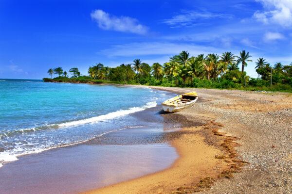 Jamaika Strand Palmen