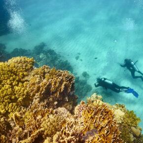 Frühbucherwoche Ägypten: 15 Tage Nilkreuzfahrt & 4* Strandurlaub mit Verpflegung, Flug & Transfer für 671€