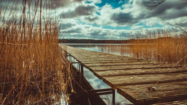 Mecklenburgische Seenplatte Steg
