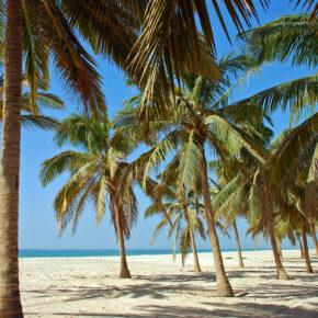 Arabische Halbinsel: 5 Tage Salalah im TOP 4* Hotel mit Frühstück, Flug, Transfer und Zug nur 383€