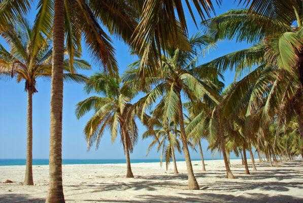 Oman Salalah Beach
