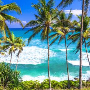 Juni: 13 Tage Sri Lanka im TOP 5* AWARD Hotel mit All Inclusive, Flug, Transfer & Zug nur 997€