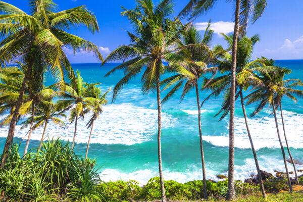 Sri Lanka wilder Strand
