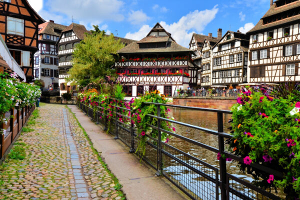 Straßburg Blumen