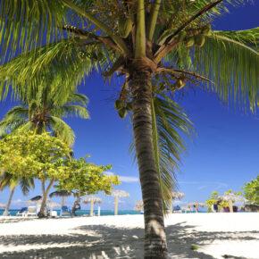 Karibik Feeling: 7 Tage Kuba mit Hotel, All Inclusive, Flug, Transfer & Zug für nur 363€