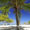 Kuba: 9 Tage All Inclusive im 4* Hotel mit Flug & Transfer nur 599€