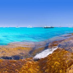 Lastminute: 7 Tage auf Ibiza im TOP 3.5* All Inclusive Hotel mit Flug nur 296€