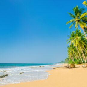 Traumurlaub: 15 Tage auf Martinique mit Hotel & Flug nur 747 €
