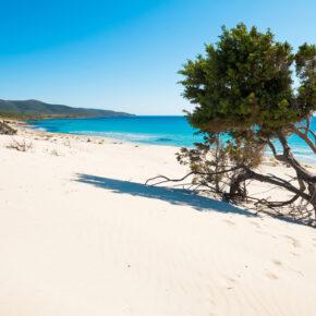 Sardinien: 8 Tage im TOP 4* Hotel mit Frühstück & Flug nur 212€