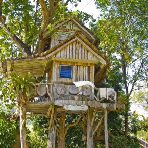 Die coolsten Baumhaus-Hotels Deutschlands & weltweit