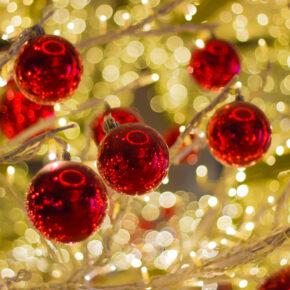 Christmas Garden Berlin: Nur 2 € statt 17 € mit Gutschein