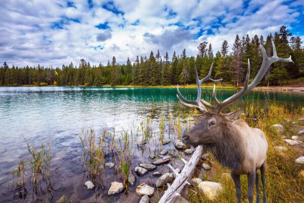 Kanada Landschaft