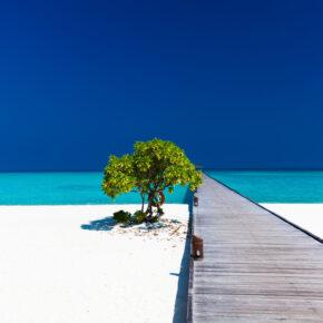 Traumurlaub auf den Malediven: 15 Tage mit 3* Hotel inkl. Frühstück & Flug für 879€