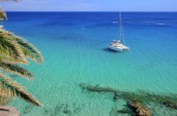 Sonne tanken auf Fuerteventura: 8 Tage im Apartment mit Pool inkl. Flug nur 138€