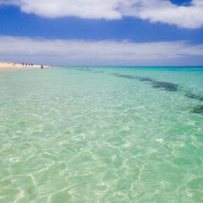 Kanaren mit Familie oder Freunden: 8 Tage Fuerteventura mit tollem Apartment & Flug nur 129€