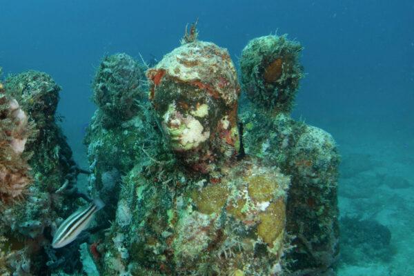 Unterwassermuseum MUSA in Mexiko