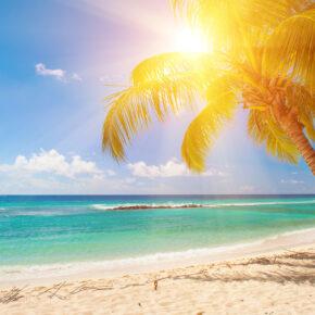 Error Fare? 7 Tage auf Barbados im 5* All Inclusive Hotel mit Flug, Transfer & Zug nur 761€
