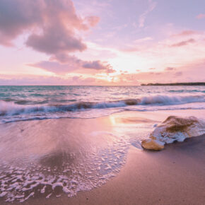 Australien Darwin Strand Stein Meer Sonnenuntergang
