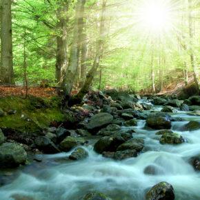 Wellness im Bayerischen Wald: 2 Tage im TOP 4* Hotel mit Frühstück & Spa nur 45€