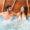 2 Tage Romantik im 5* Hotel in Frankfurt inkl. Frühstück, Wellness & Extras für 289€