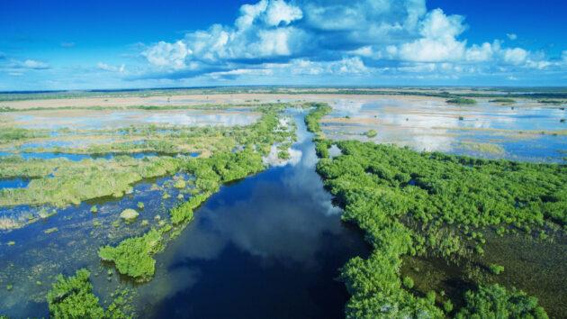 USA Everglades Tour