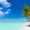 Ab in die Karibik: 14 Tage Dom Rep im 4* Hotel mit All Inclusive, Flug, Transfer & Zug nur 911€