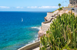 Gran Canaria im Hochsommer: 7 Tage im guten 3* Hotel mit HP, Flug & Transfer nur 361€