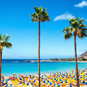 Beste Reisezeit für Gran Canaria