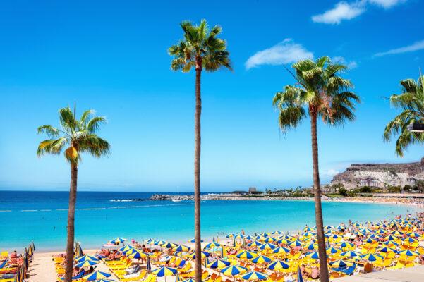 Last Minute nach Gran Canaria