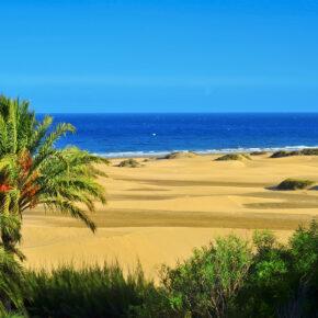 Im Sommer auf Gran Canaria: 1 Woche im 3.5* Hotel mit Flug & Transfer nur 294€