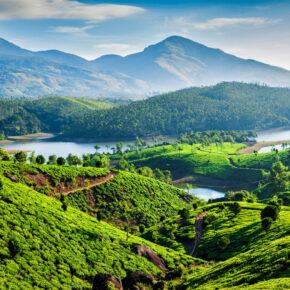 Kerala in Indien Tipps: Die 12 beliebtesten Sehenswürdigkeiten & Aktivitäten