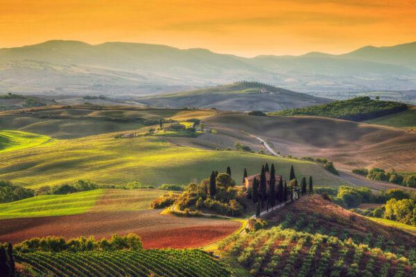 Italien Toskana Wiesen