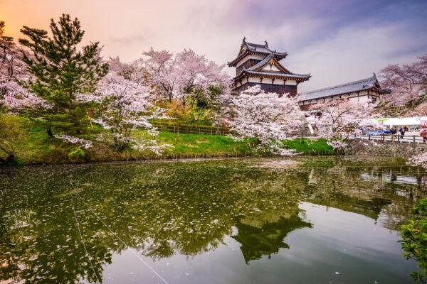 Japan Burg Frühling