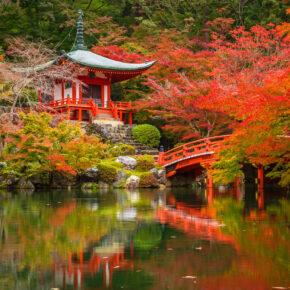 Im japanischen Yunessun macht Baden betrunken