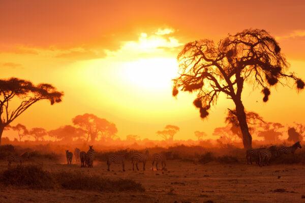 Kenia Sonne