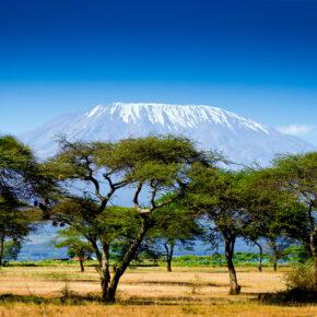 Hin- & Rückflüge nach Kenia mit Gepäck nur 195€