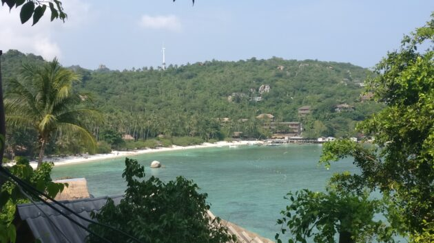 Koh Tao Shark Bay